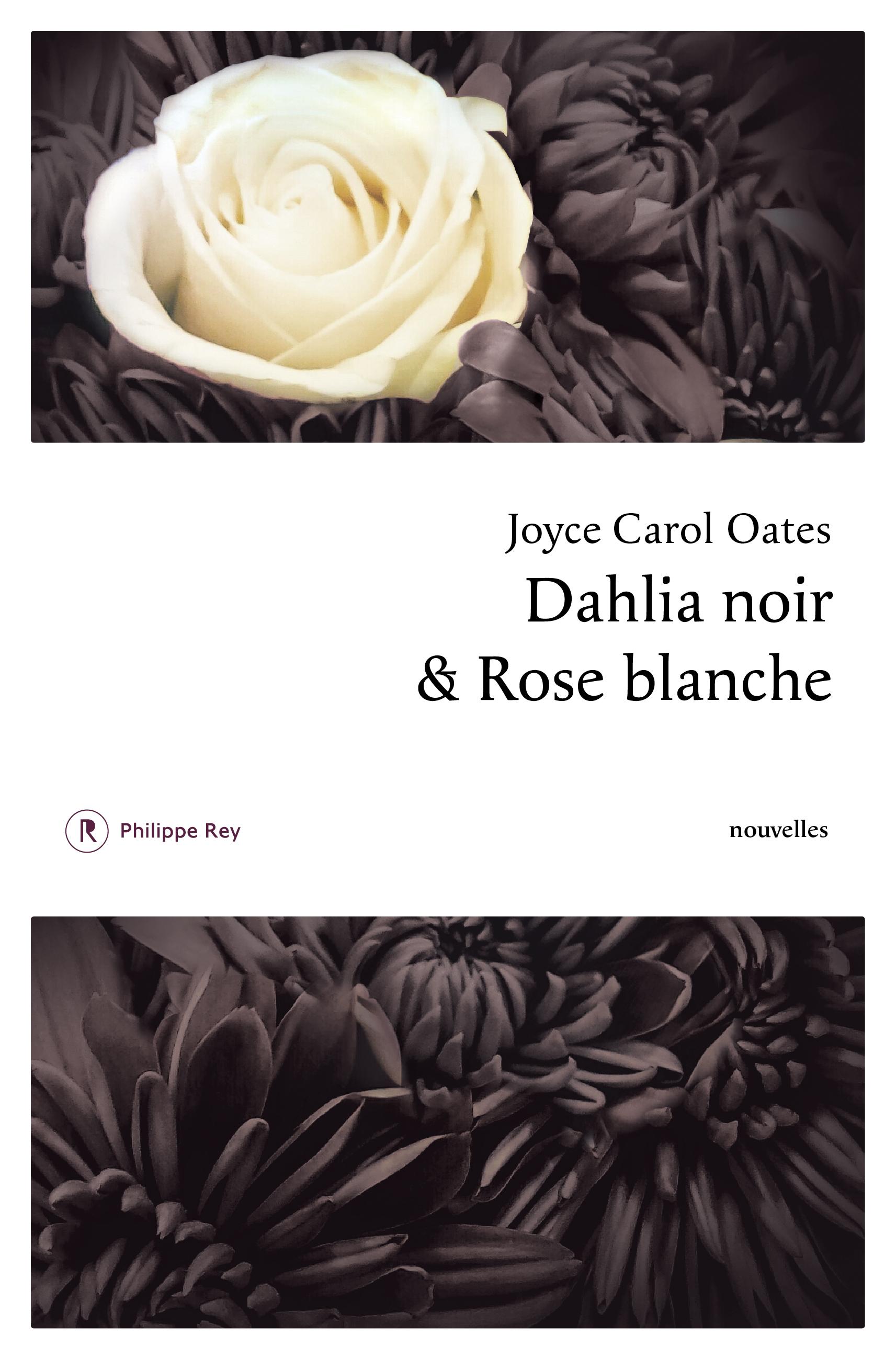 Dahlia Noir Rose Blanche